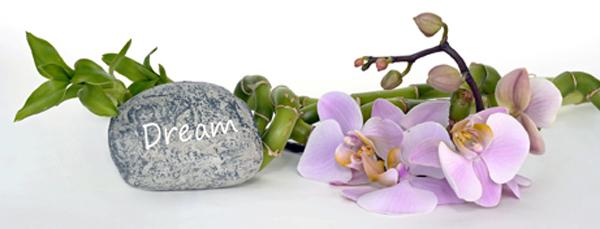 orchid-dream-wasserbettbedarf